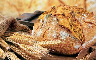 DELAVNICA: Peka kruha in parkljev iz kvašenega testa – sobota, 18.11.2017 od 9. do 14. ure